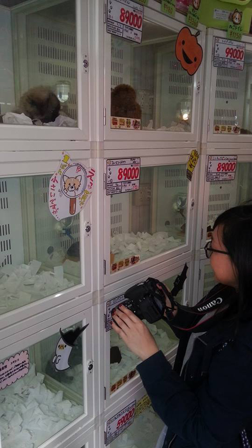 me at pet store